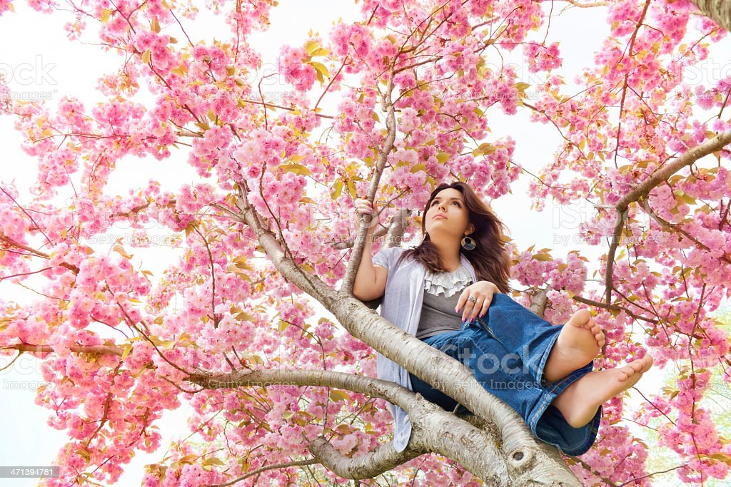 Spring Blossoms Holding A Wondering Girl stock photo