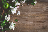 Spring blossoms on wooden background with copy space