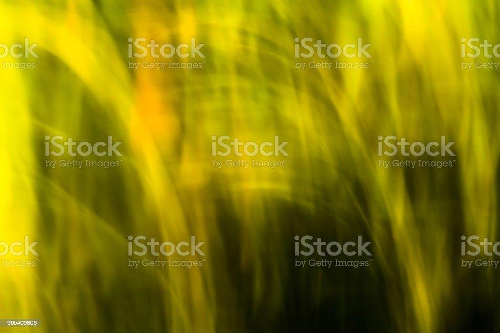 Printemps des fleurs floues. Effet de flou de mouvement abstrait - Photo de Arbre libre de droits