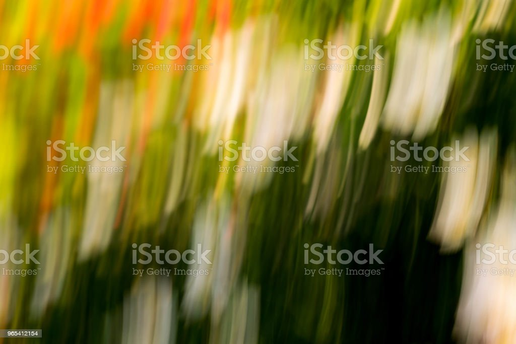 Spring blurred flowers. Abstract motion blur effect zbiór zdjęć royalty-free