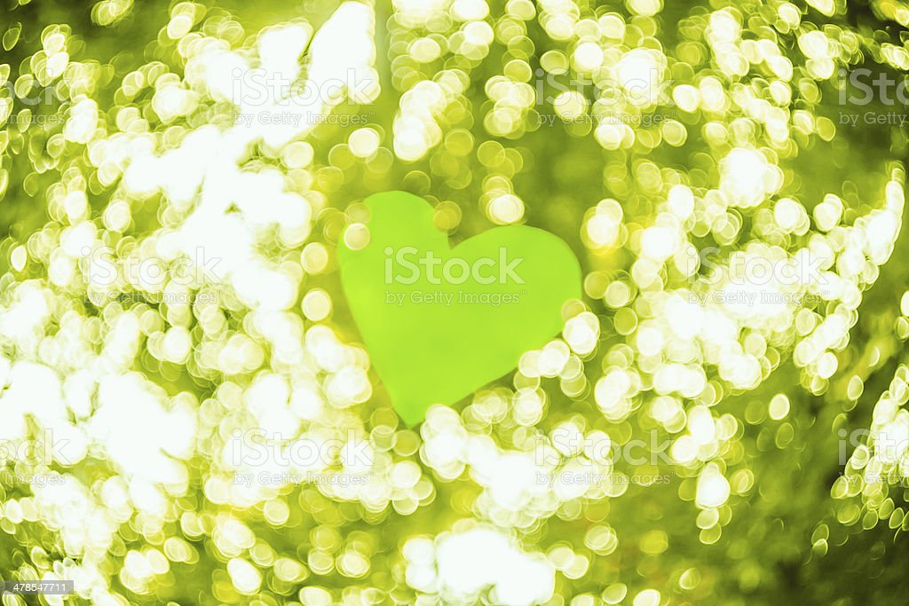 Spring bokeh background royalty-free stock photo