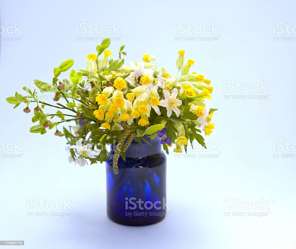 Spring bouquet in blue vase. stock photo