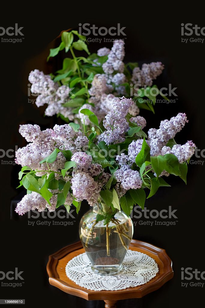 Spring Bouquet of Lilacs royalty-free stock photo