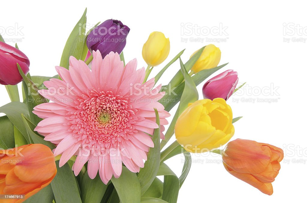 Spring Bouquet (XL) royalty-free stock photo