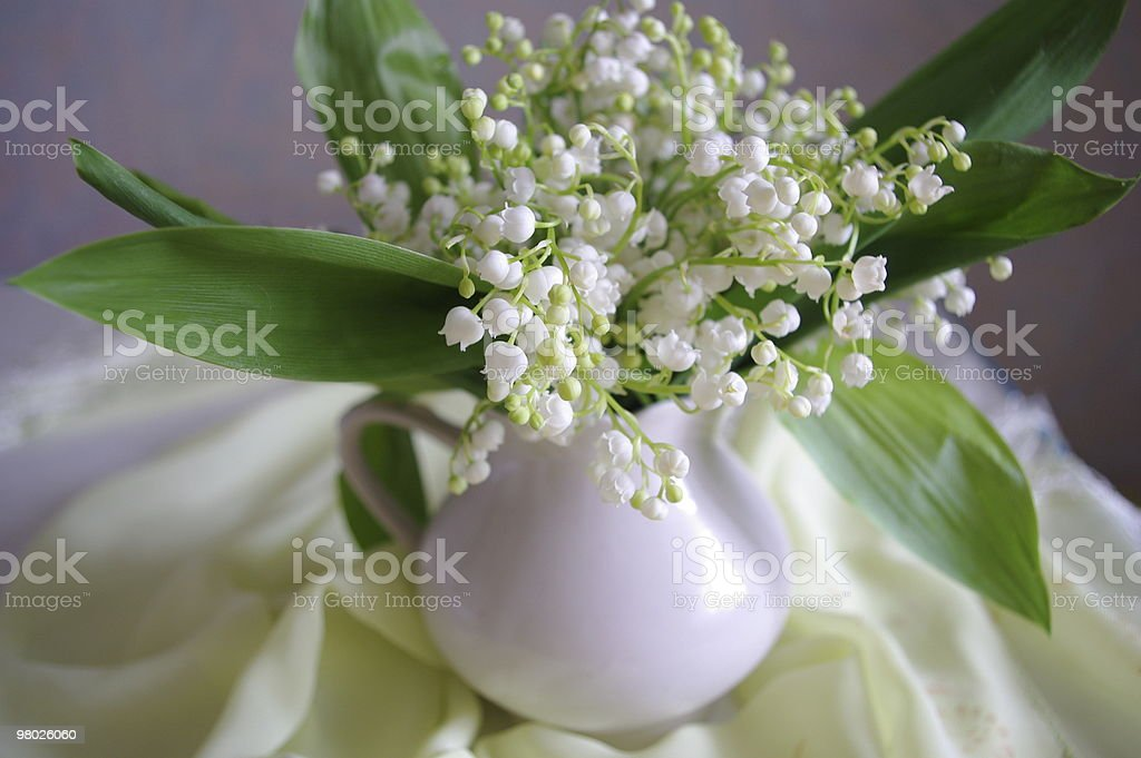 Spring bouquet. royalty-free stock photo