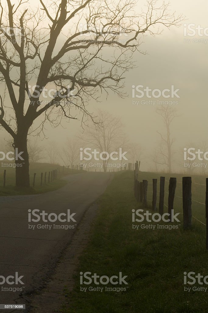 Spring, Cades Cove, Great Smoky Mtns NP stock photo