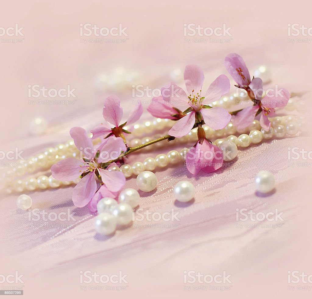spring card royalty-free stock photo
