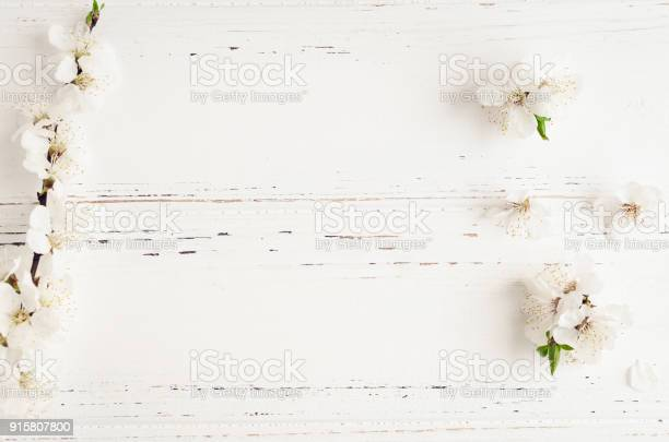 Spring cherry blossom on rustic wooden background picture id915807800?b=1&k=6&m=915807800&s=612x612&h=ft0yc1ooi zg5jyquvd b4ujehb7vmyt5v6bnds4vk0=
