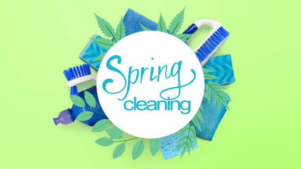 Spring cleaning illustration over different clean tools on green picture id1201620259?b=1&k=6&m=1201620259&s=612x612&w=0&h=dy8dqsaa8yhu6ixdgxpdajbpsgxbcky3nxx qe8ipnq=