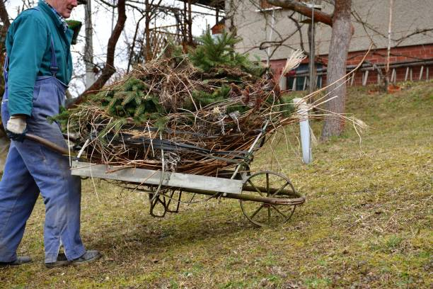 Spring cleaning in the garden at the cottage from branches and dry grass stock photo