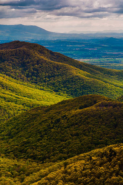Spring colors in the Appalachians, seen from Blackrock Summit in stock photo