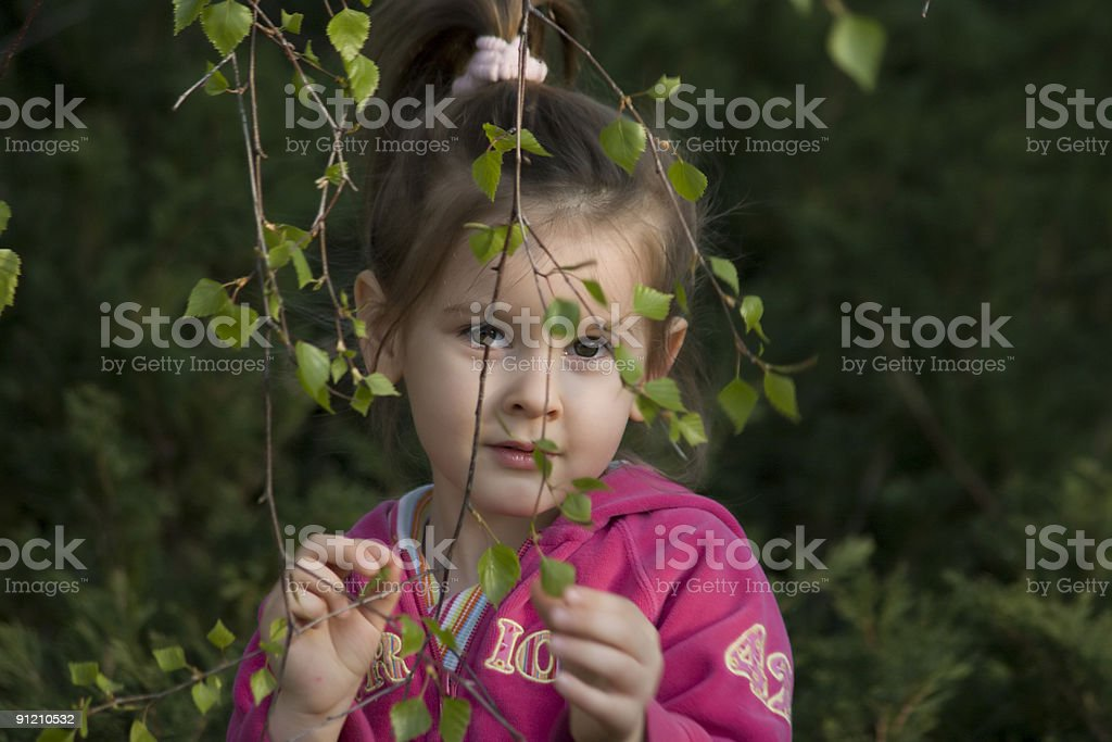 spring comes stock photo