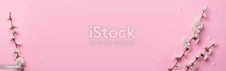 909680446 istock photo Spring composition of the twigs of flowering trees on a pink paper background. 1156655335