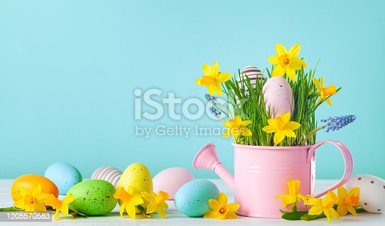 922843504 istock photo Spring composition with colorful Easter eggs, spring daffodil flowers and green grass. 1205570583
