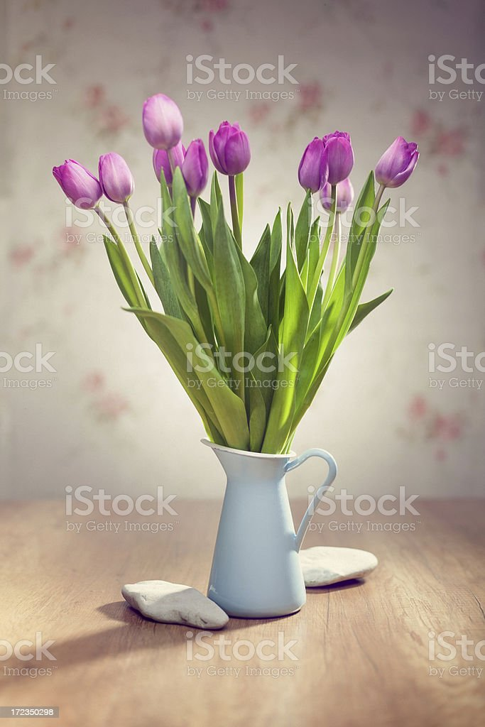 Spring composition with tulips royalty-free stock photo