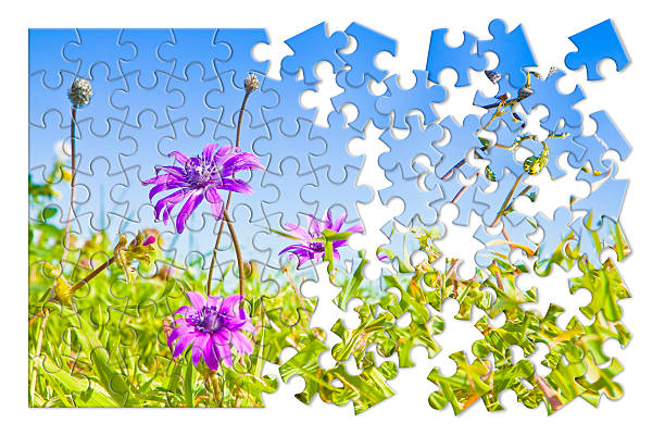 Spring concept in puzzle shape stock photo