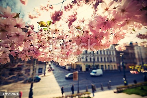 825525754istockphoto Spring day in the city 472287574