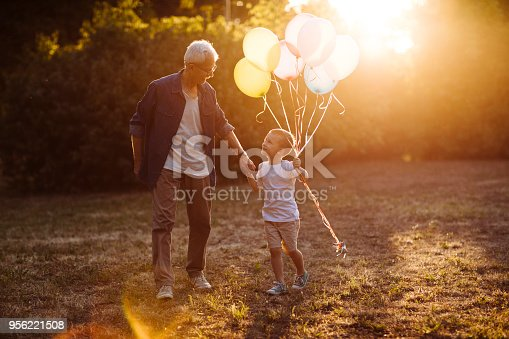 istock Spring day with grandpa 956221508