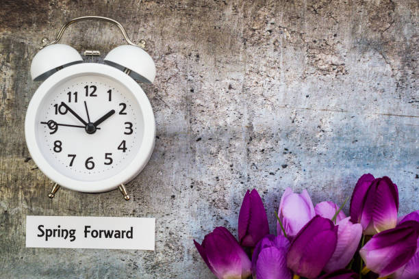 Spring Daylight Saving Time concept - Spring Forward Spring Daylight Saving Time concept with with clock and flowers, flat lay daylight savings stock pictures, royalty-free photos & images