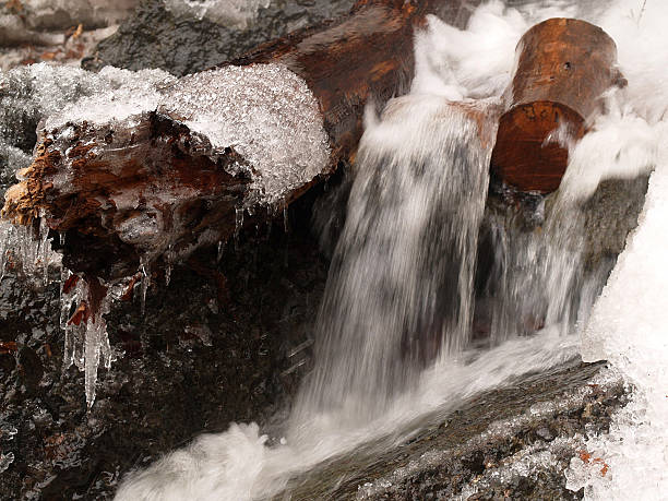 spring defrost stream among timber - defrost stock pictures, royalty-free photos & images