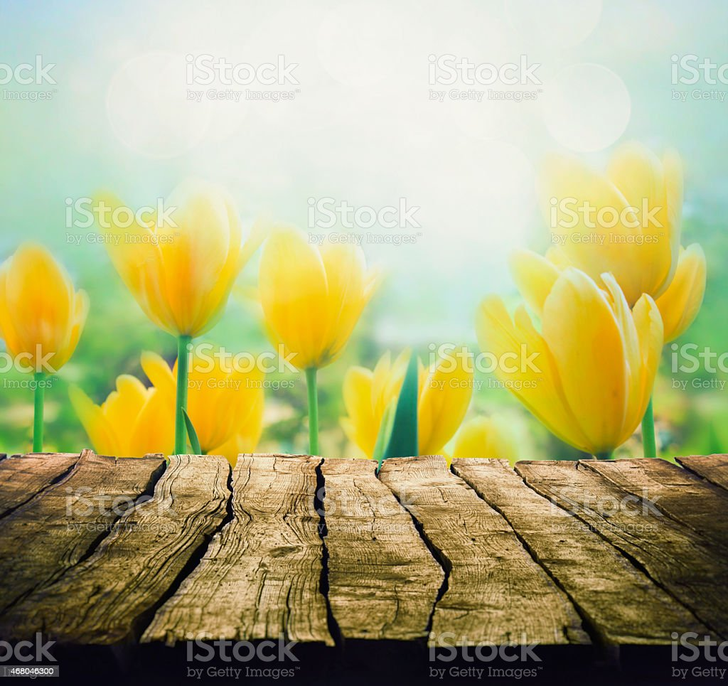 Easter background with tabletop. Spring Flowers background. Wood...