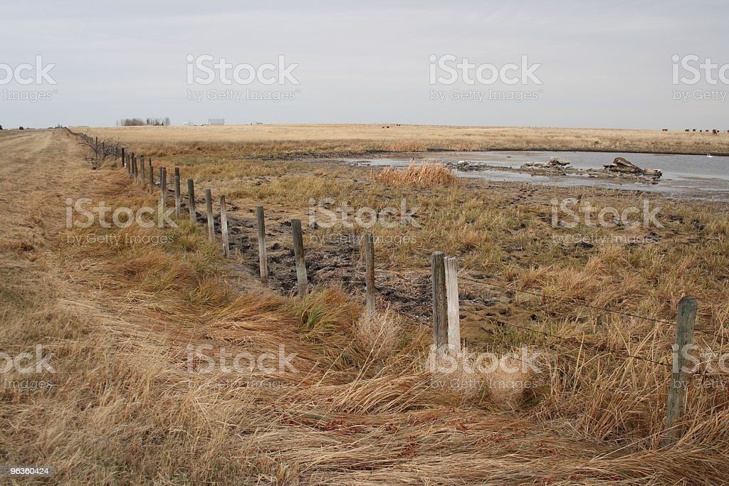 spring ditch and slough in Alberta royalty-free stock photo