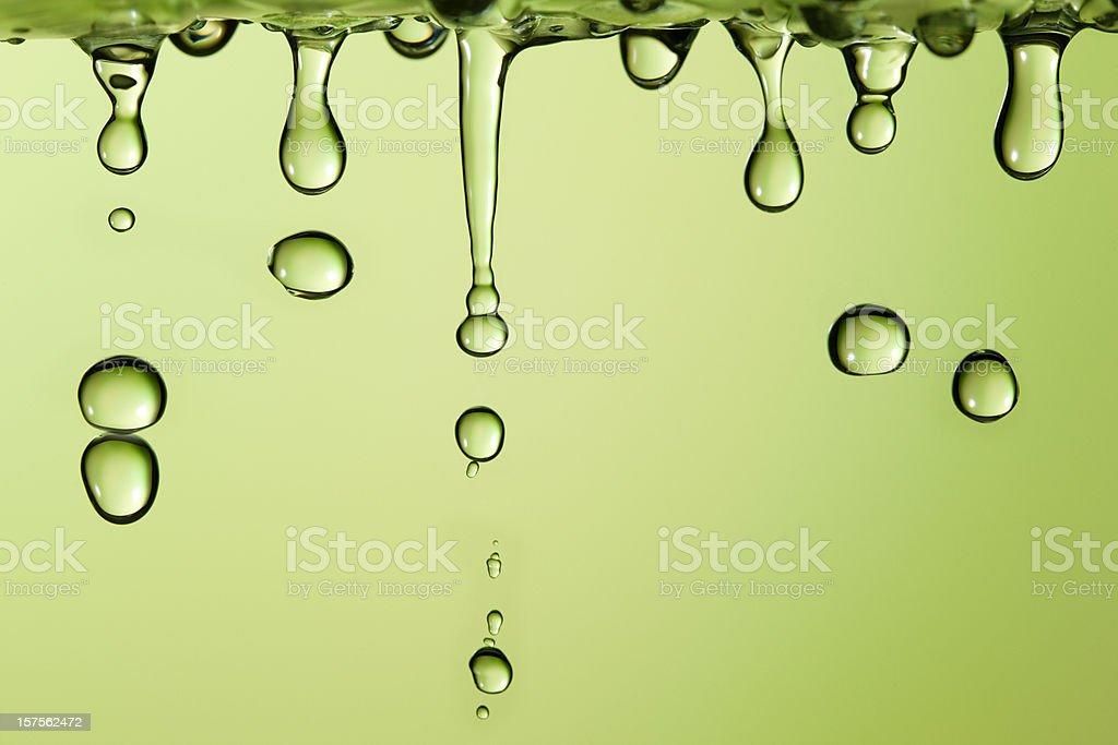 Spring drops stock photo