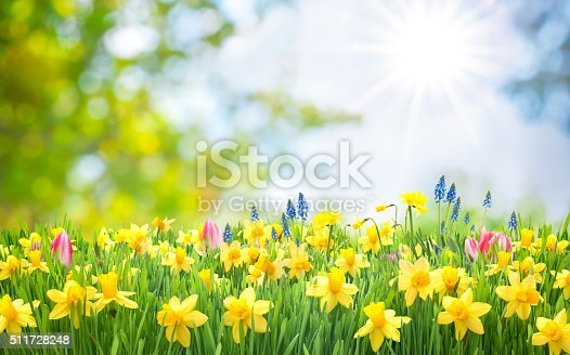 istock Spring Easter background 511728248