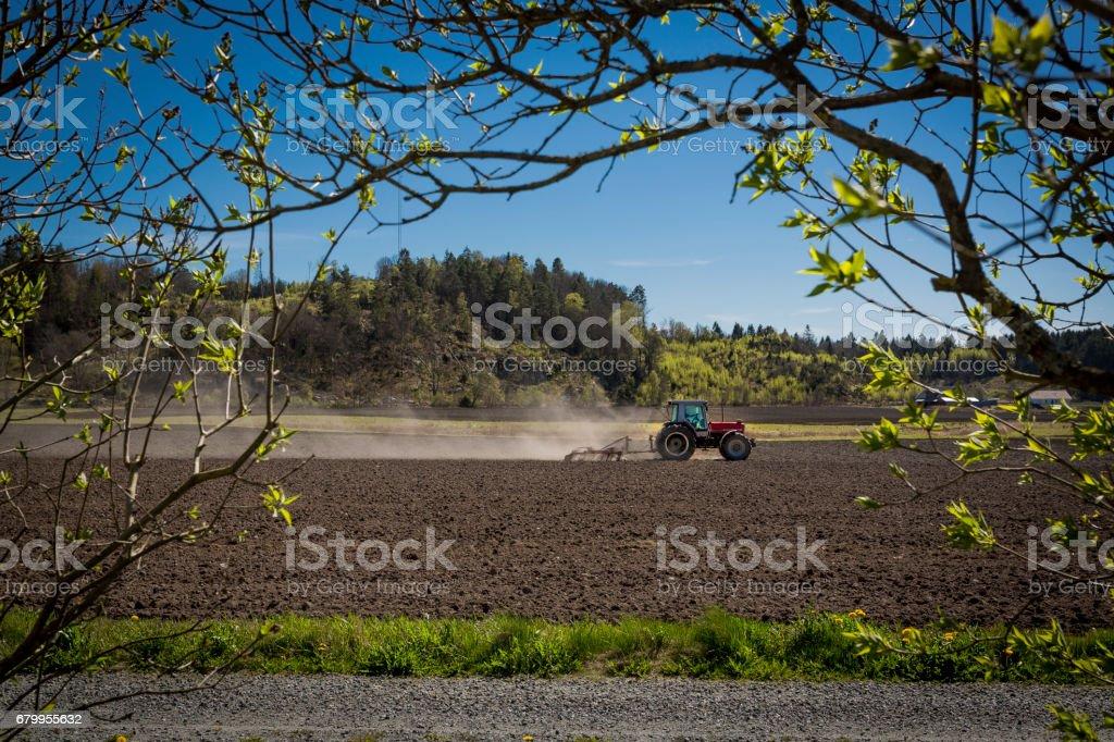 Spring farming stock photo