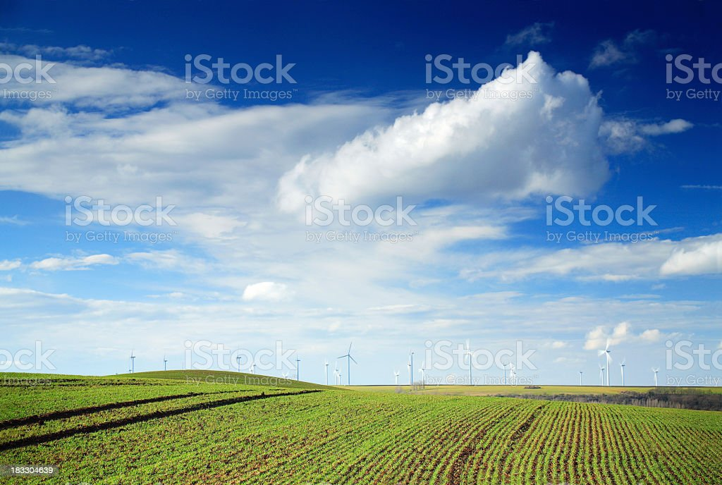 Spring Fields IV stock photo