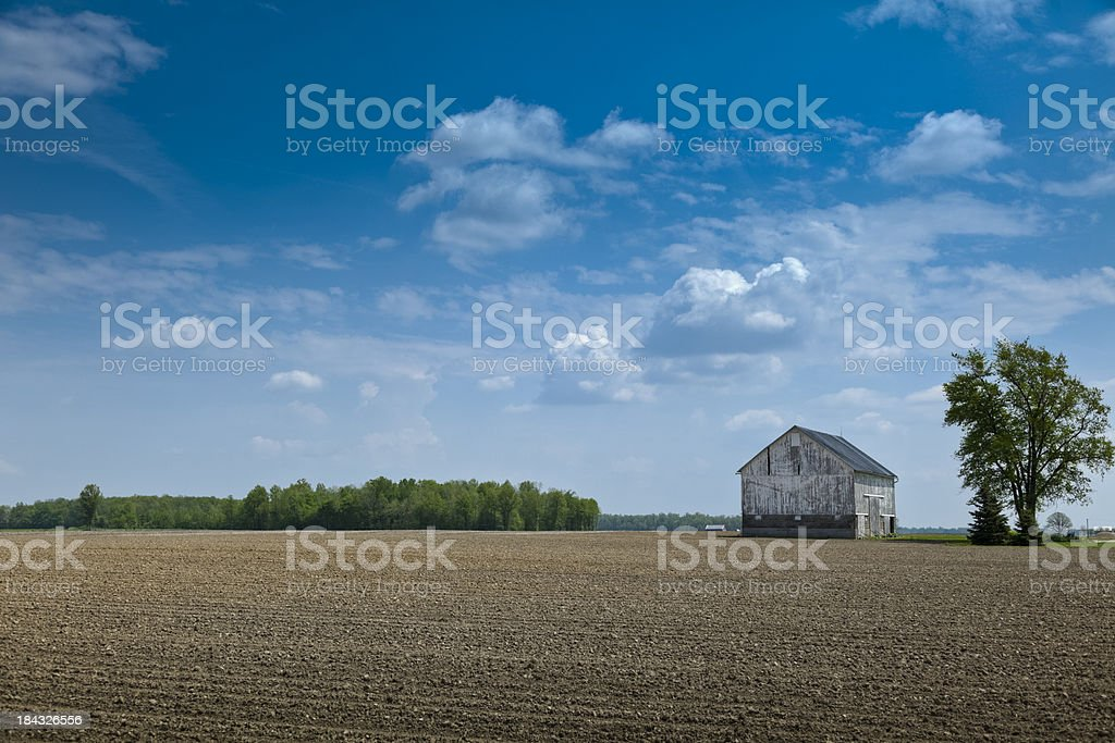 Spring Fields Surround a Weathered Barn stock photo