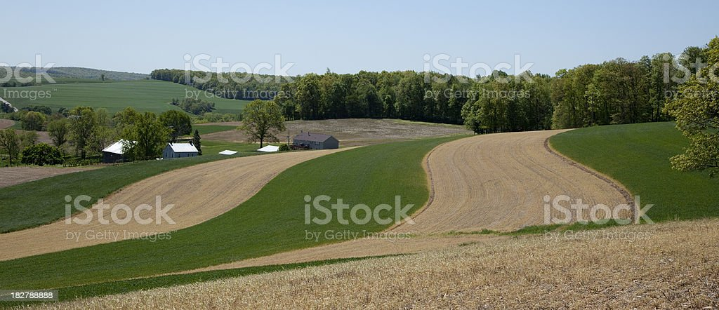 Spring Fields With Newly Planted Crops on Rolling Hills stock photo
