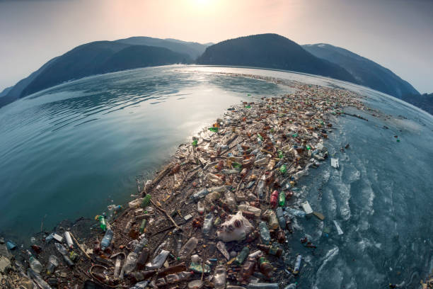 Spring flood and shore with garbage stock photo