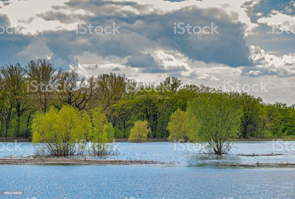 Spring flood. stock photo