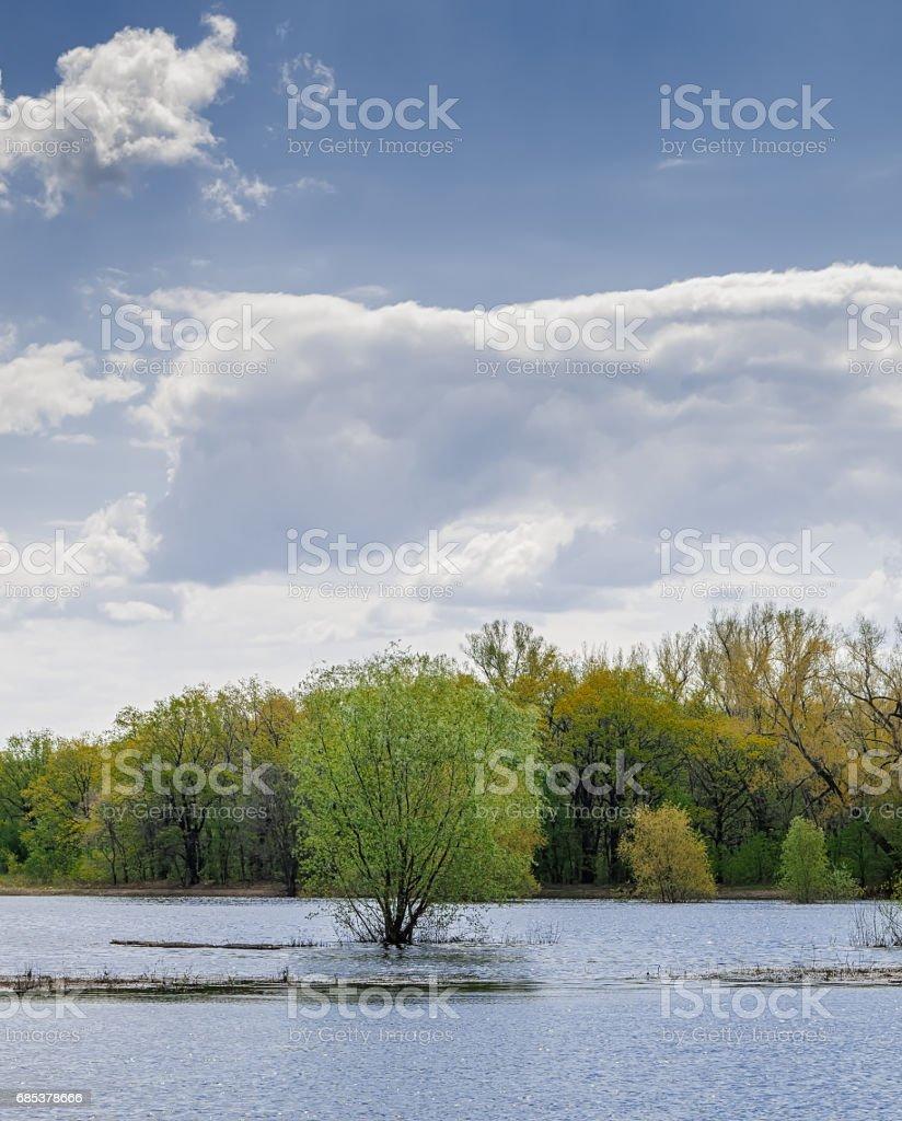 Spring flood. royalty-free stock photo