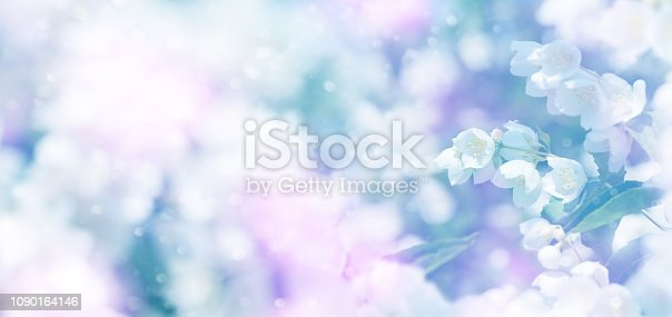 istock Spring floral background 1090164146