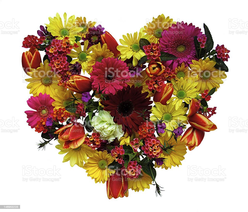 Spring floral Heart stock photo