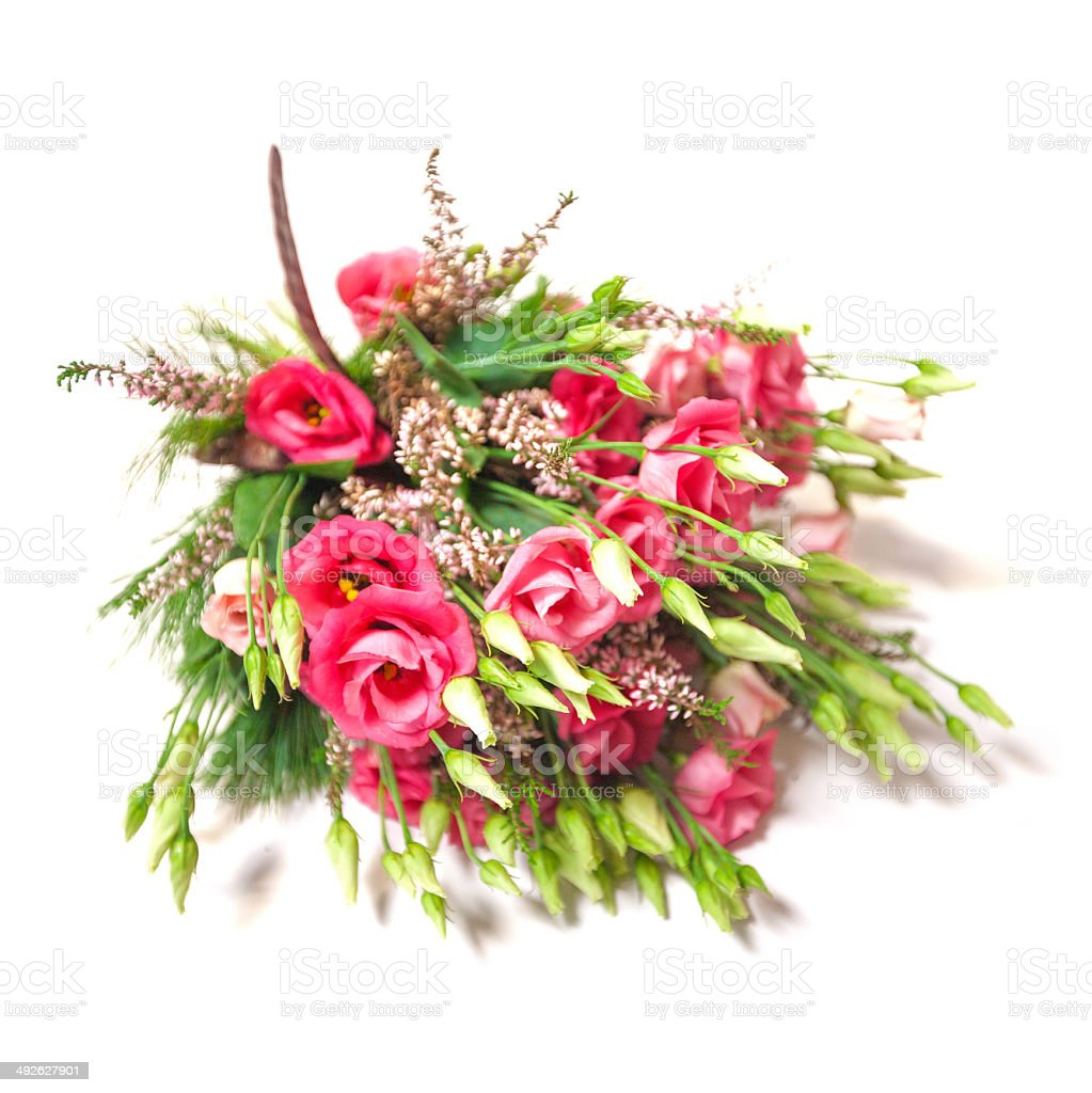 Spring flower assortment royalty-free stock photo