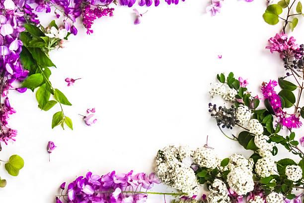 春の花の背景 ストックフォト