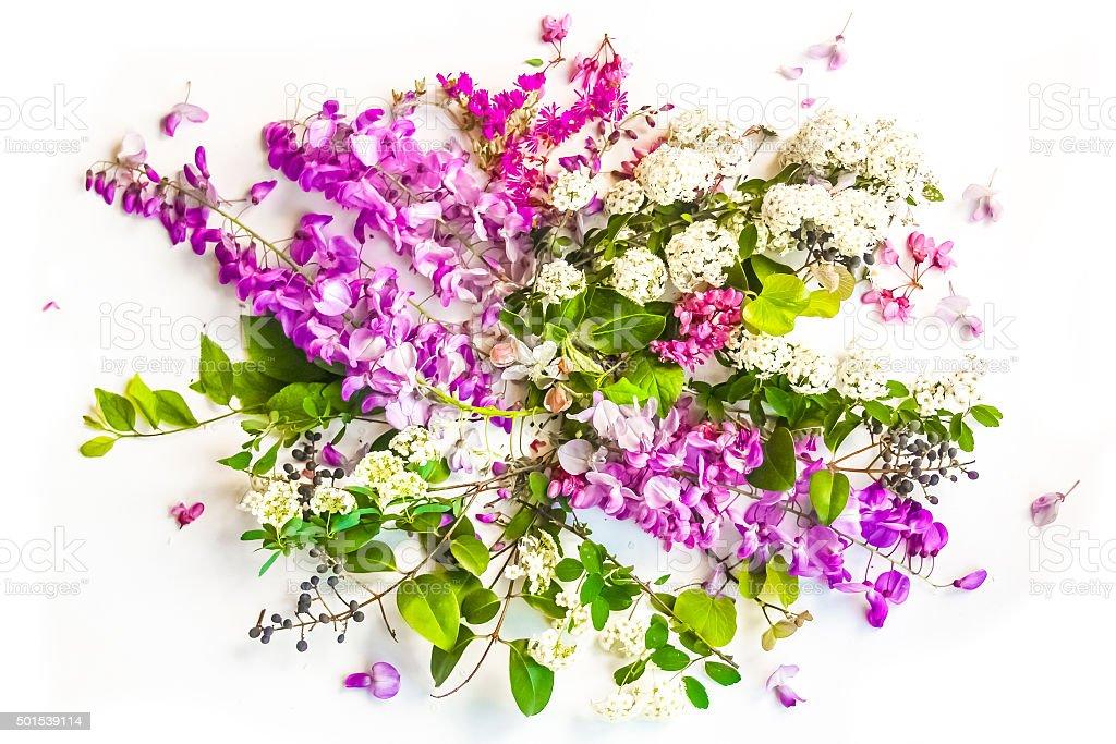 Spring Flower Background stock photo