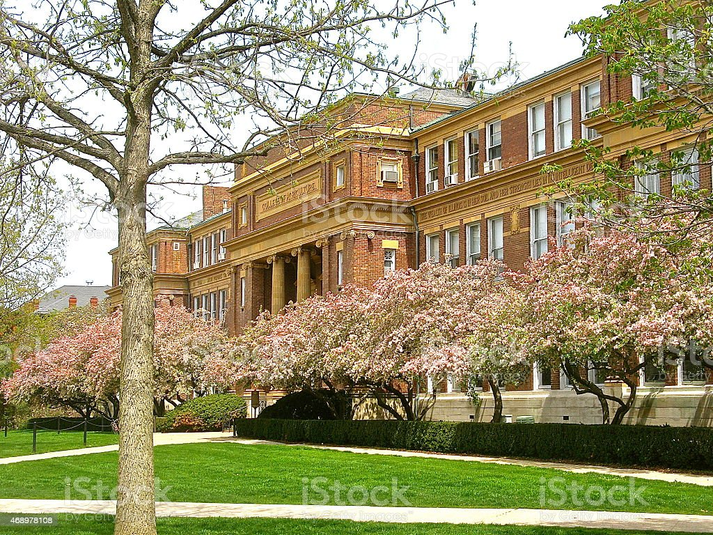 Spring flower blossoms and tree buds on college campus stock photo