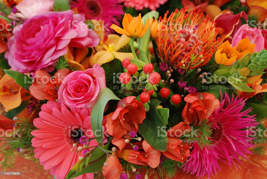 Spring flower explosion stock photo