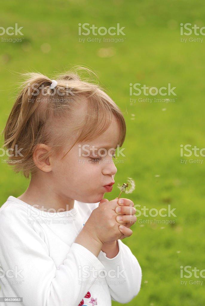 Flor de primavera - Foto de stock de Beleza royalty-free