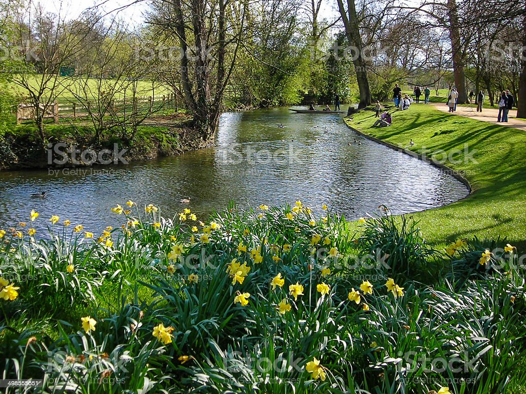 Spring Flowers Along The Thames River In Oxford England Stock Photo