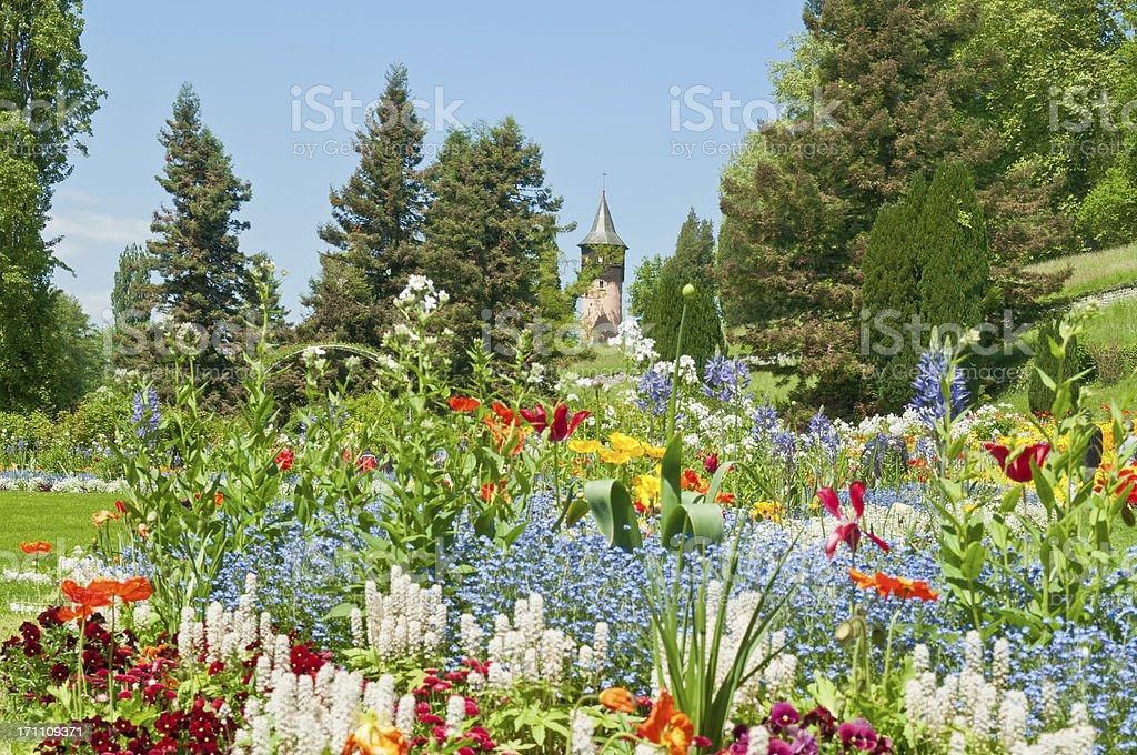 spring flowers at Island Mainau Germany stock photo