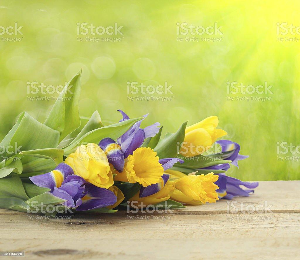 Sfondo Fiori Di Primavera Fotografie Stock E Altre Immagini Di