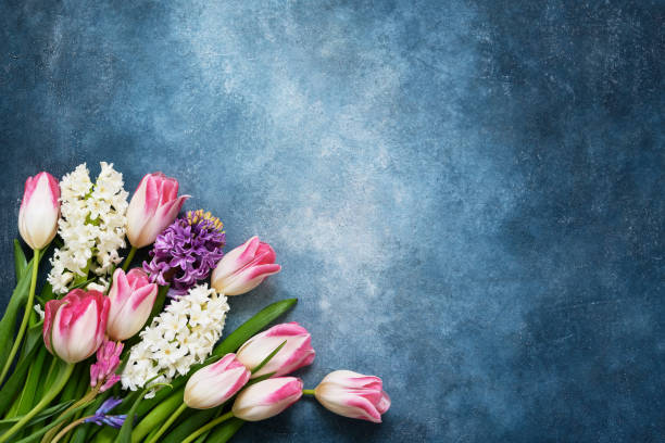 spring flowers bouquet on blue background. top view, copy space. greeting card. - mothers day stock pictures, royalty-free photos & images