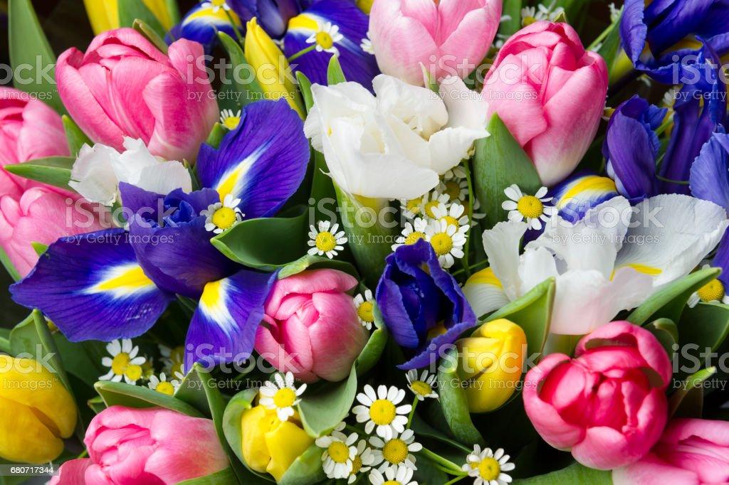 Spring Flowers Bouquet Stock Fotografie Und Mehr Bilder Von