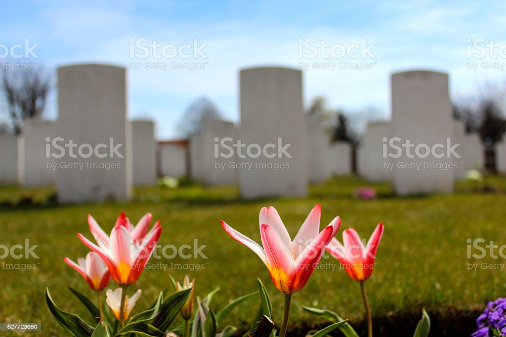 Spring Flowers Growing At A Military Cemetery Stock Photo More