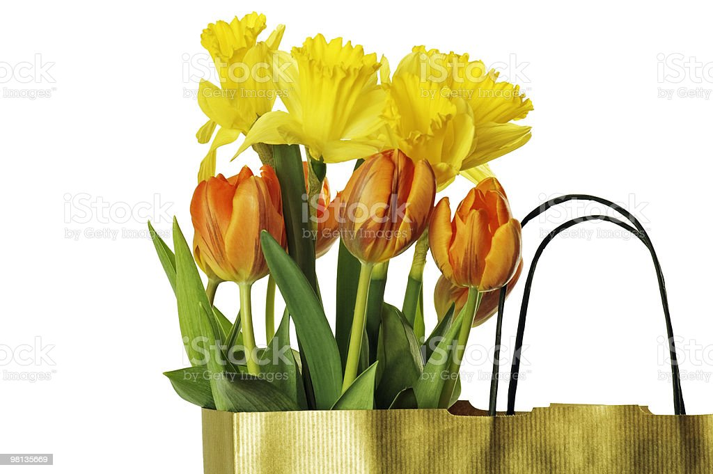 spring flowers In a gift package royalty-free stock photo